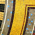 Carolyn Kami Loughlin - Mosaic Angle