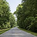 Natchez Trace Parkway In Cobert County by Carol M Highsmith