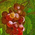 Angela A Stanton - Nature goodness grapes...