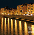 Night View Of River Arno Bank In Pisa by Kiril Stanchev