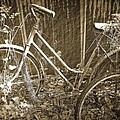 Laurie Perry - Old Bikes