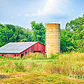 Peggy  Franz - Old Country Farm and Barn