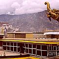 On Jokhang Monastery Rooftop by Anna Lisa Yoder