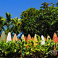 Paulette Wright - Original Surfboard Fence...