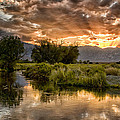 Cat Connor - Owens River Sunset