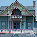 Painted Lady In Ocean Grove Nj by Anna Lisa Yoder