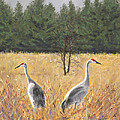 Jymme Golden - Pair of Sandhill Cranes