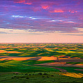 Inge Johnsson - Palouse Land and Sky