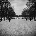 Justin Woodhouse - Parisian Avenue in Winter