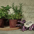 Robin-lee Vieira - Parsley Sage Rosemary...