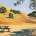 Asha Carolyn Young - Picnic Table and Yellow...