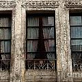 Lisa Van der Plas - Picture windows
