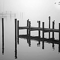 Brian Wallace - Pilings In The Fog