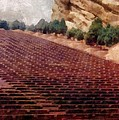Playing At Red Rocks by Michelle Calkins