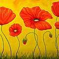 Veikko Suikkanen - Poppies at the time of