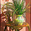 Ginny Schmidt - Potted Plant in Chair No...