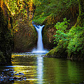 Inge Johnsson - Punchbowl Falls