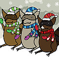 Raccoons Winter by Christy Beckwith