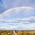 Dawna  Moore Photography - Rainbow over the Beach...