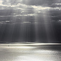 Rays Of Hope by Shane Bechler