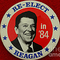 Paul Ward - Re-Elect Reagan