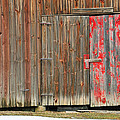 Mike Martin - Red Barn Door