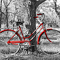James Granberry - Red Bicycle