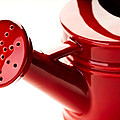 Onyonet  Photo Studios - Red Ceramic Watering Can