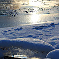 River Ice by Hanne Lore Koehler