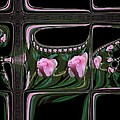 Nancy Pauling - Rosebud Windows