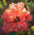 Karen Whitworth - Ruffled Light Double...