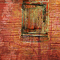 Lyn  Perry - Rust Wall