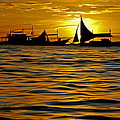 Harold Bonacquist - Sailboats in the Sunset...