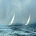 Andrea Kollo - Sailing into the Unknown