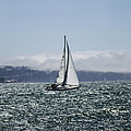 Dee  Savage - Sailing the SF Bay