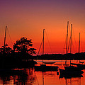 Sylvia J Zarco - Sailors Delight Boston...