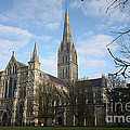 Terri  Waters - Salisbury Cathedral