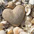 sea shell Heart by Boon Mee