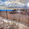 Debra and Dave Vanderlaan - Shadows on the Dunes