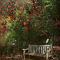 Sit With Me Here by Laurie Search