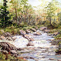 Dorothy Maier - Small Falls in the Forest