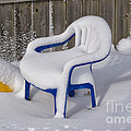 Thomas Woolworth - Snow Covered Chair