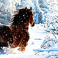 M and L Creations - Snow horse