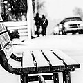 Shelby  Young - Snowy Bench