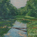 Gregory Arnett - Spring Pond Reflection