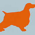 Springer Spaniel Orange by Naxart Studio