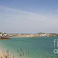 Terri  Waters - St Ives From The Train