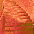 Steps by Wendy J St Christopher
