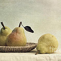 Priska Wettstein - Still Life With Pears