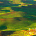 Reflective Moments  Photography and Digital Art Images - Sun Painted Hills